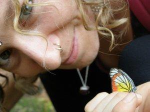 Dana Butterfly