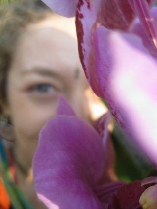 Dana flower