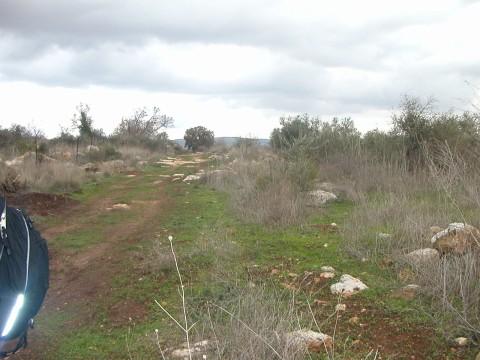 Biblical_land