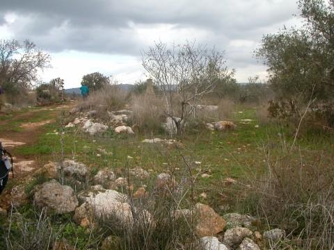 Biblical_land_2