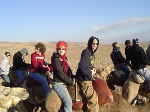 I_ride_camels